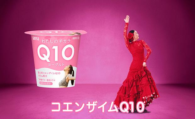 Q10 カネカ コエンザイム